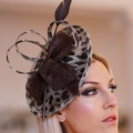 leopard print occasion wear hat