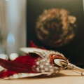 red pheasant feather country pin