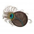 peacock crystal hair comb