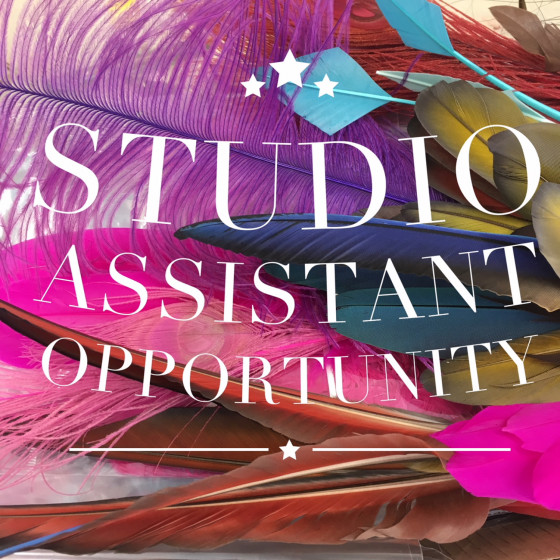 Studio Assistant Opportunity