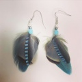 blue jay, macaw and partridge feather earrings